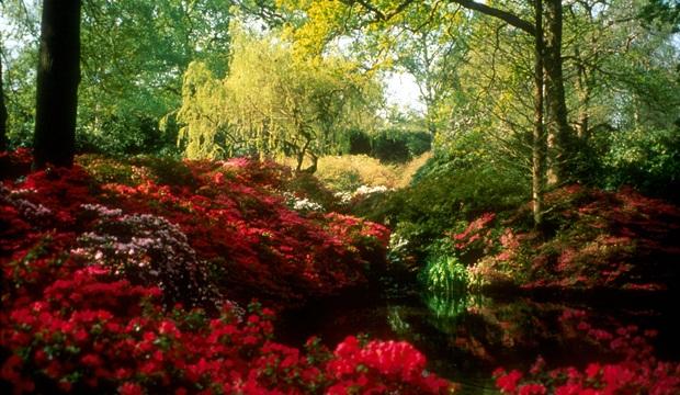 Divulgação: Royal Parks